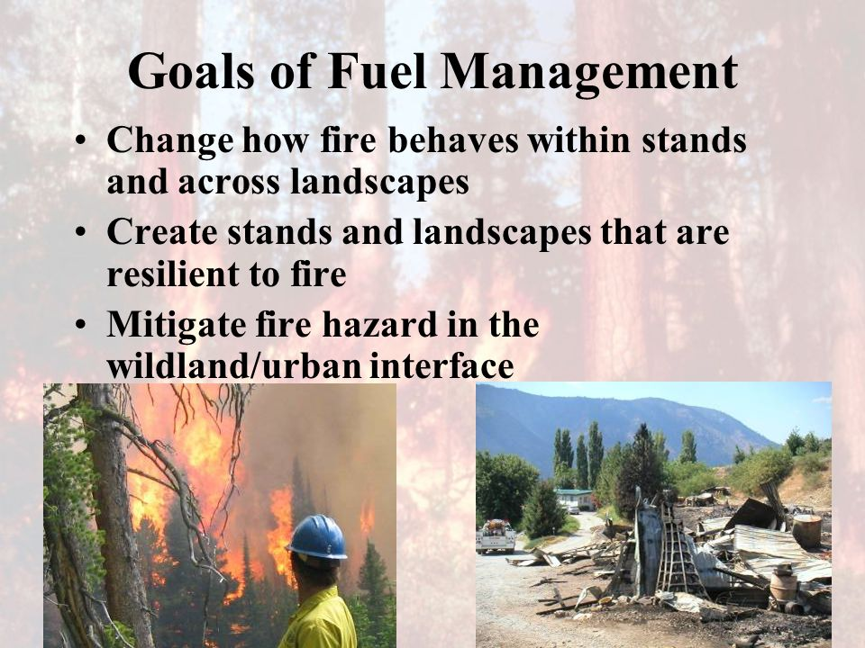 Goals of Fuel Management Change how fire behaves within stands and across landscapes Create stands and landscapes that are resilient to fire Mitigate fire hazard in the wildland/urban interface