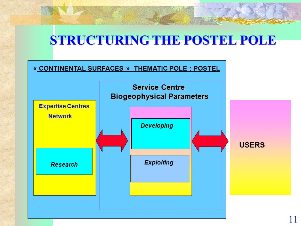 11 STRUCTURING THE POSTEL POLE « CONTINENTAL SURFACES » THEMATIC POLE : POSTEL Expertise Centres Network Developing Exploiting USERS Research Service Centre Biogeophysical Parameters