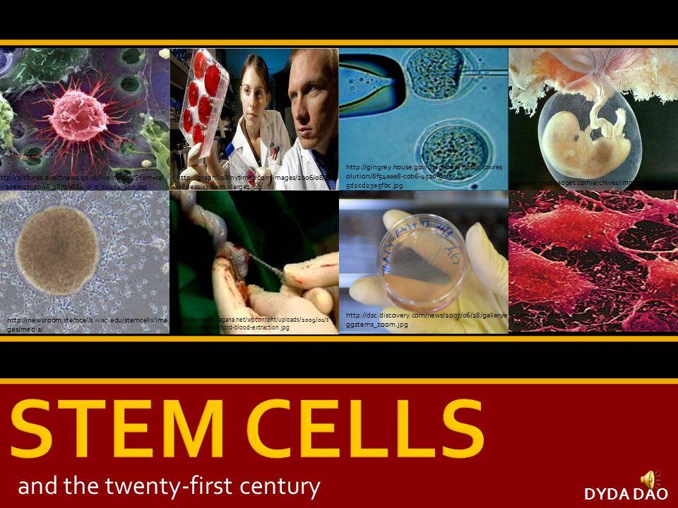 http://www.iconocast.com/B000000000000165/ K4/News1_0.jpg http://www.medgadget.com/archives/img/placenta.GI F http://pictures.directnews.co.uk/liveimages/Stem+cel l+research_1096_18729884_0_0_10474_300.jpg http://graphics8.nytimes.com/images/2006/08/17/b usiness/17stem.xlarge1.jpg http://newsroom.stemcells.wisc.edu/stemcells/ima ges/media/ http://dsc.discovery.com/news/2007/06/28/gallery/e ggstems_zoom.jpg http://www.cihr- irsc.gc.ca/images/cancer_cells.jpg DYDA DAO http://stemcell.taragana.net/wpcontent/uploads/2009/01/s tem-cell-umbilical-cord-blood-extraction.jpg and the twenty-first century http://gingrey.house.gov/UploadedPhotos/lowres olution/8f54aae8-c0b6-4520-9cf5- 5d2cd23e5fbc.jpg