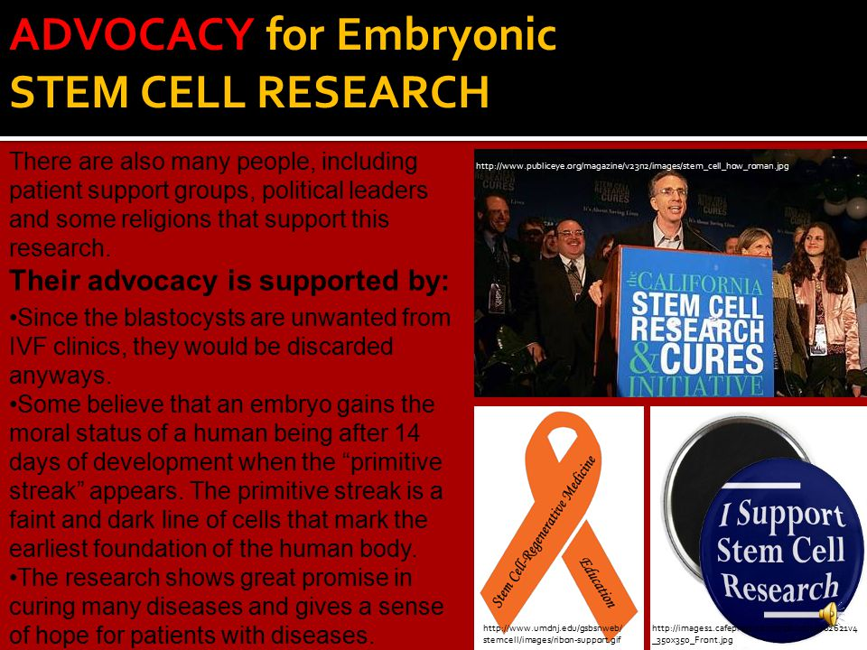ADVOCACY for Embryonic STEM CELL RESEARCH There are also many people, including patient support groups, political leaders and some religions that support this research.