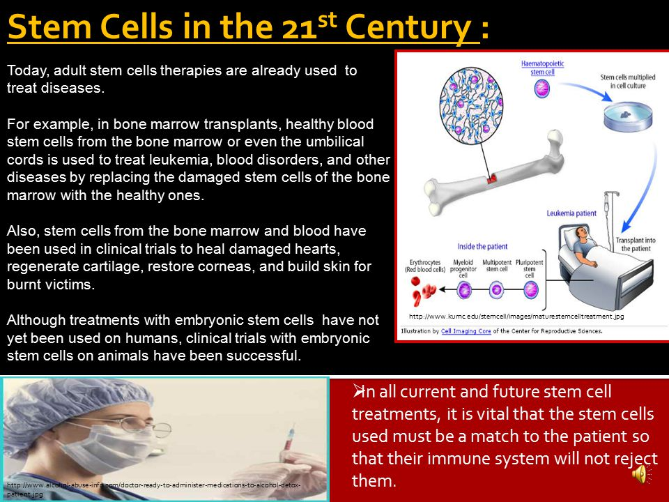 ADVOCACY for Embryonic STEM CELL RESEARCH There are also many people, including patient support groups, political leaders and some religions that supp