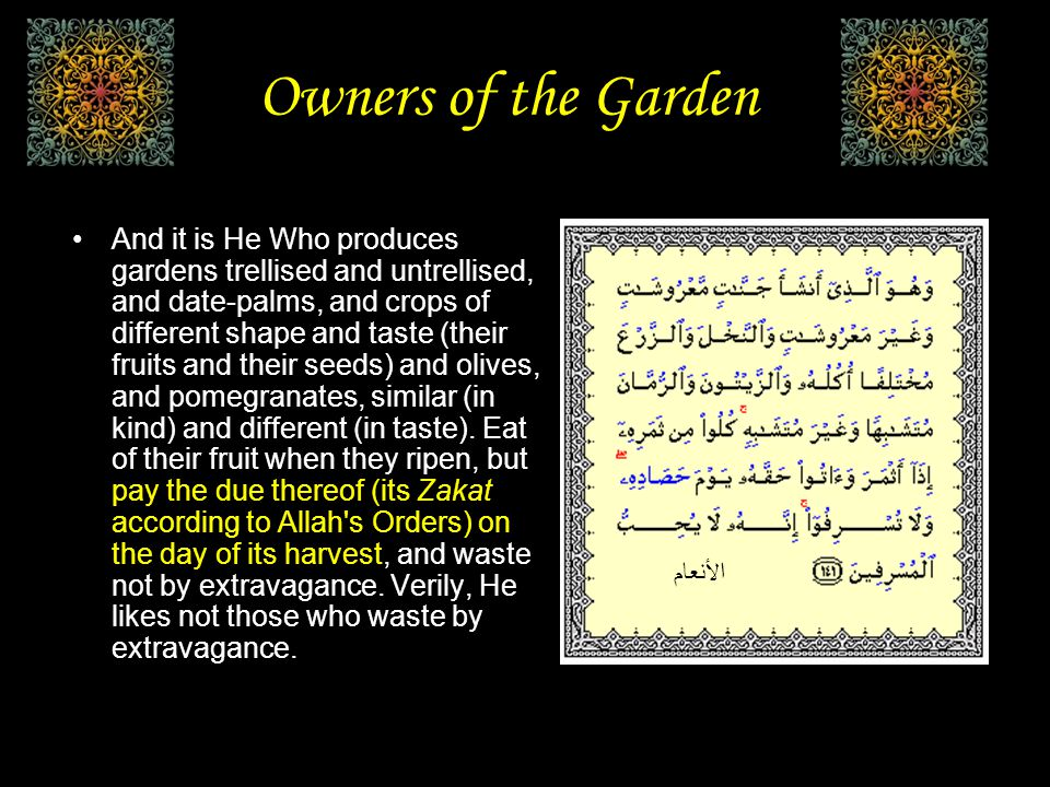 Owners of the Garden Then there passed by on the garden a visitation (fire) from your Lord at night and burnt it while they were asleep.