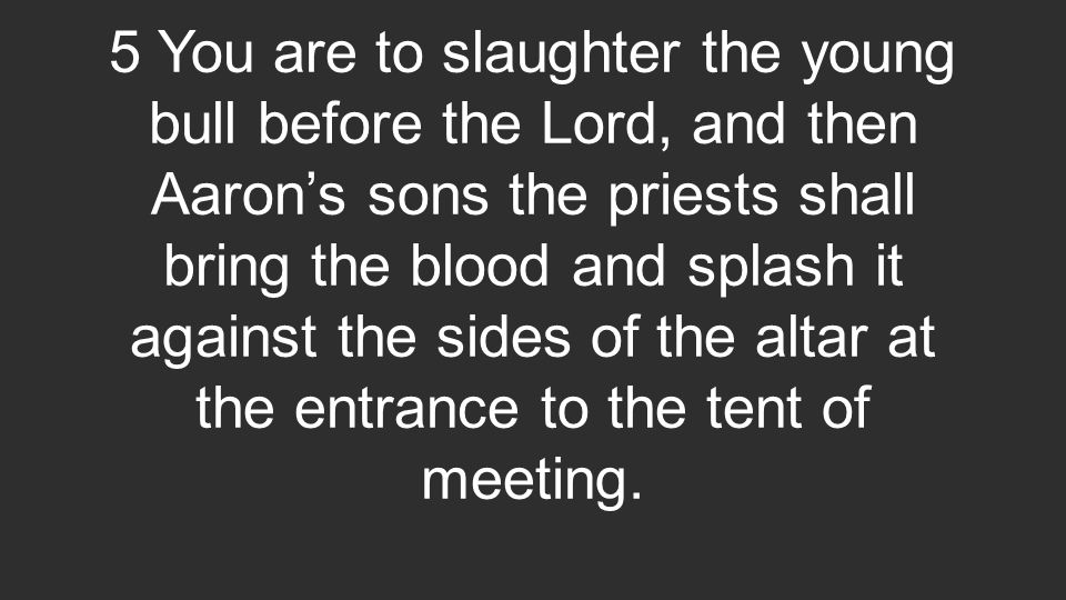 5 You are to slaughter the young bull before the Lord, and then Aaron's sons the priests shall bring the blood and splash it against the sides of the altar at the entrance to the tent of meeting.