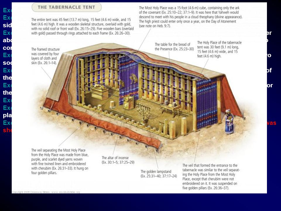 Exo 26:22 And for the sides of the tabernacle westward thou shalt make six boards. Exo 26:23 And two boards shalt thou make for the corners of the tab