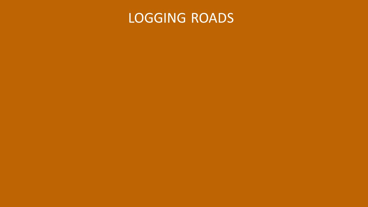 LOGGING ROADS