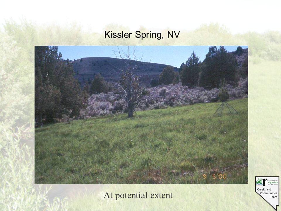 Kissler Spring, NV At potential extent