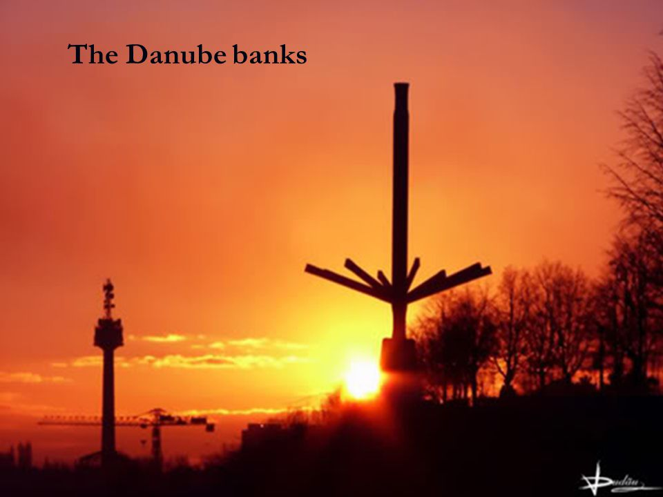 The Danube banks