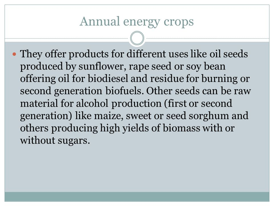 Annual energy crops They offer products for different uses like oil seeds produced by sunflower, rape seed or soy bean offering oil for biodiesel and