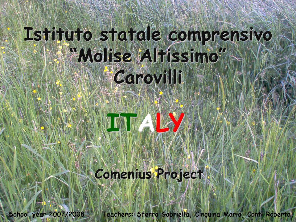 Teachers: Sferra Gabriella, Cinquina Maria, Conti Roberta School year 2007/2008 Istituto statale comprensivo Molise Altissimo Carovilli Comenius Project ITALY