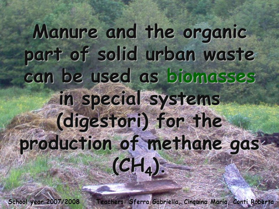 Teachers: Sferra Gabriella, Cinquina Maria, Conti Roberta School year 2007/2008 Manure and the organic part of solid urban waste can be used as biomasses in special systems (digestori) for the production of methane gas (CH 4 ).