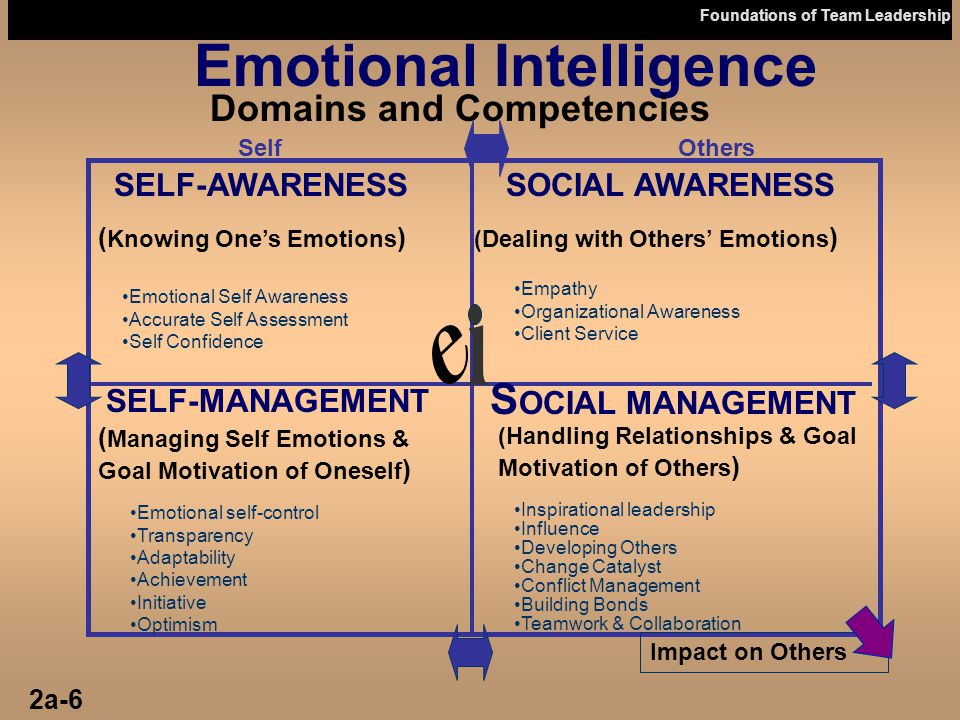 Foundations of Team Leadership Emotional Intelligence Domains and Competencies SelfOthers Empathy Organizational Awareness Client Service SOCIAL AWARE
