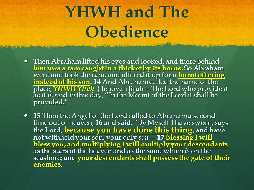 YHWH and The Obedience Then Abraham lifted his eyes and looked, and there behind him was a ram caught in a thicket by its horns. So Abraham went and t