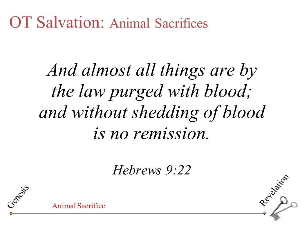 OT Salvation: Animal Sacrifices Unto Adam also and to his wife did the LORD God make coats of skins, and clothed them.