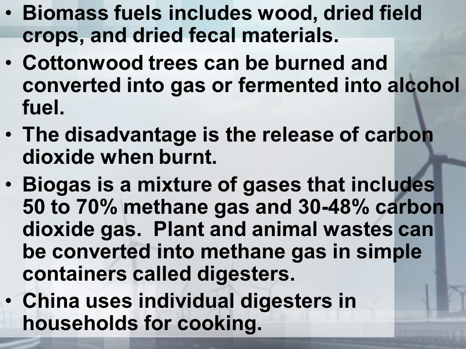Biomass fuels includes wood, dried field crops, and dried fecal materials. Cottonwood trees can be burned and converted into gas or fermented into alc
