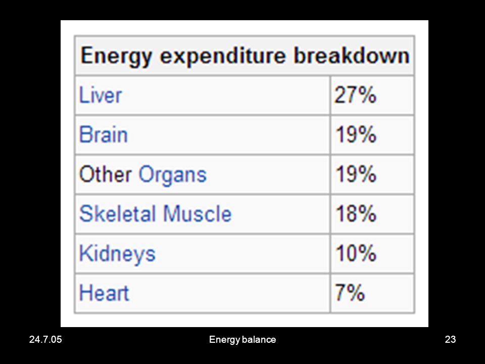 24.7.05Energy balance23