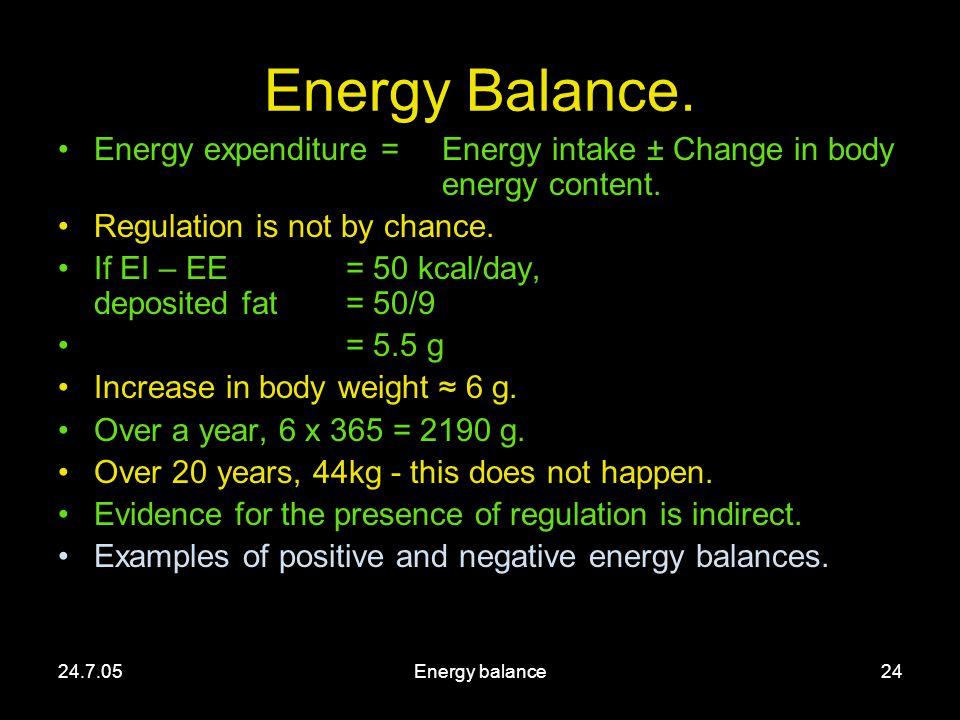 24.7.05Energy balance24 Energy Balance.