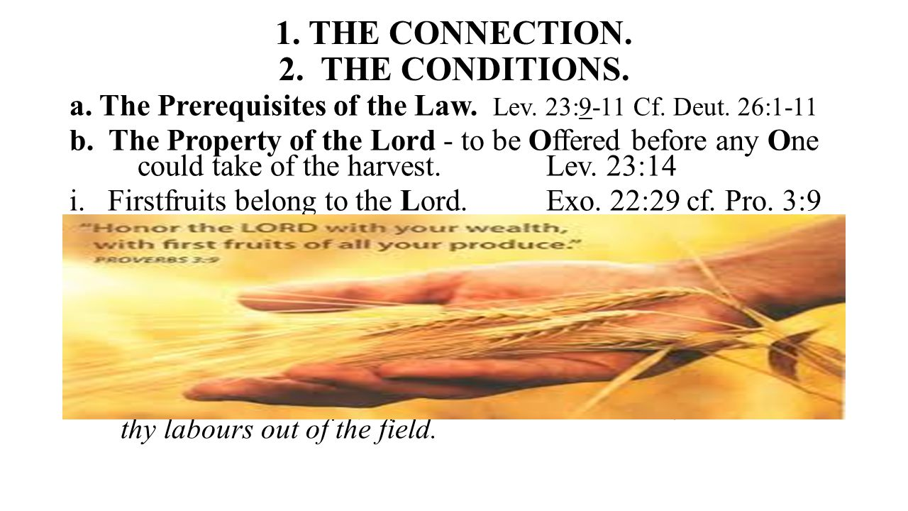 1. THE CONNECTION. 2. THE CONDITIONS. a. The Prerequisites of the Law.