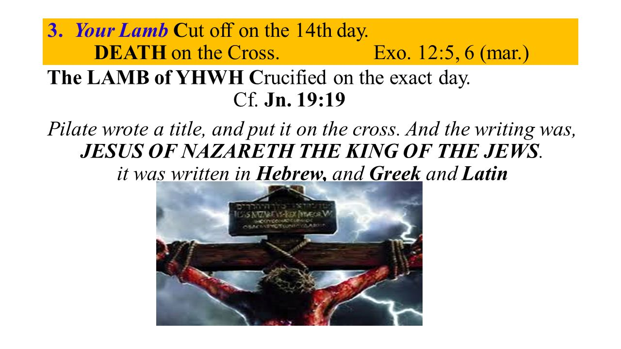 3. Your Lamb Cut off on the 14th day. DEATH on the Cross.Exo.