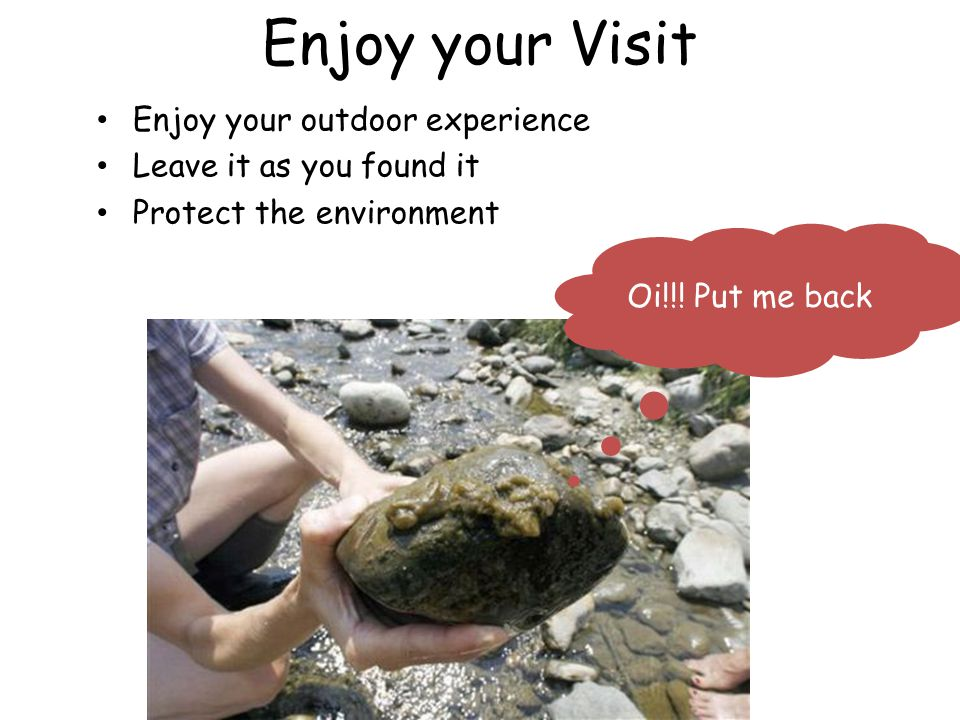 Enjoy your Visit Enjoy your outdoor experience Leave it as you found it Protect the environment Oi!!.