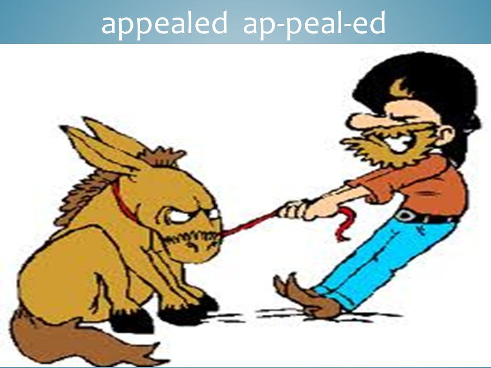 appealed ap-peal-ed