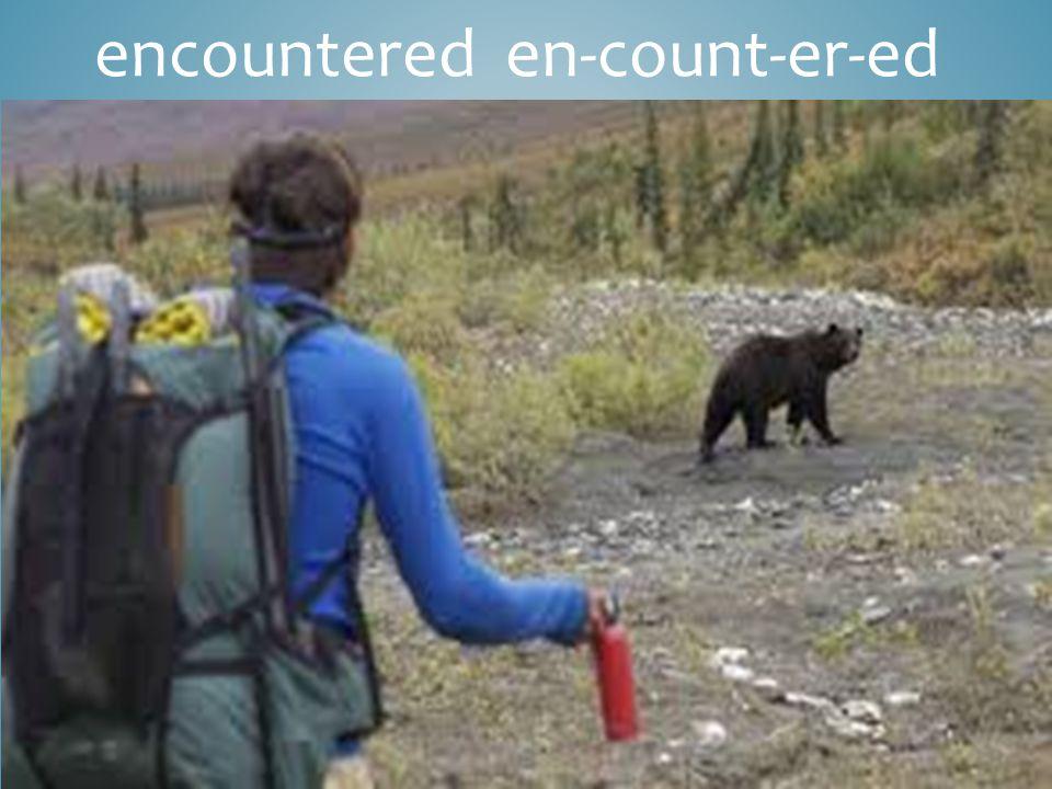 encountered en-count-er-ed