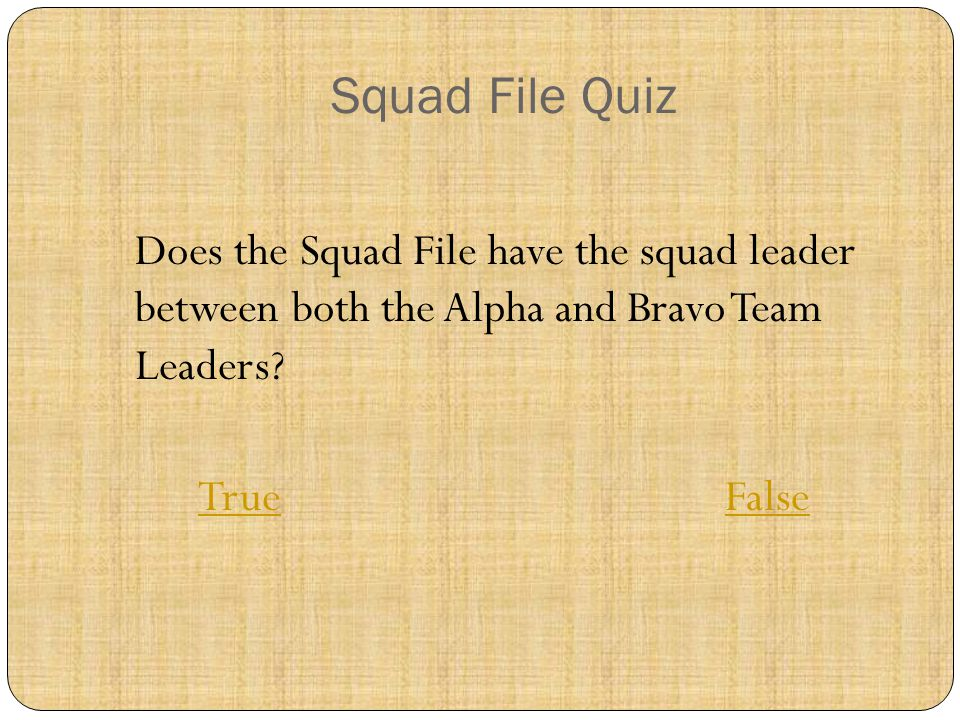 Does the Squad File have the squad leader between both the Alpha and Bravo Team Leaders? TrueTrue FalseFalse Squad File Quiz