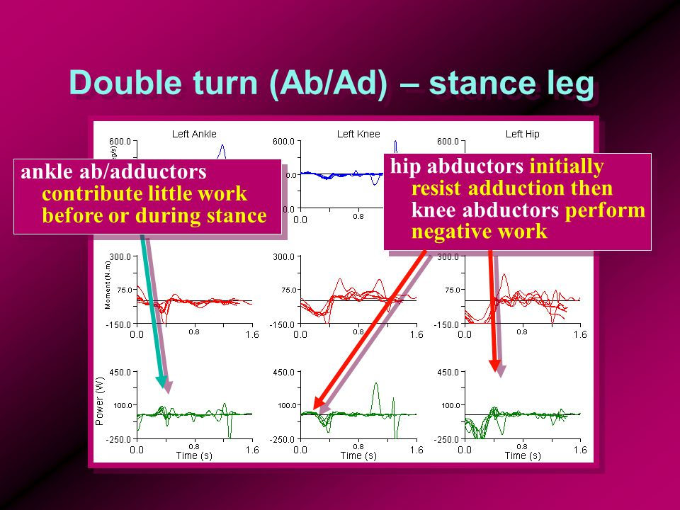 Double turn (Ab/Ad) – stance leg ankle ab/adductors contribute little work before or during stance hip abductors initially resist adduction then knee abductors perform negative work