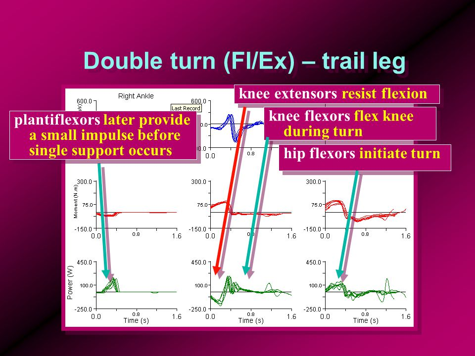 Double turn (Fl/Ex) – trail leg plantiflexors later provide a small impulse before single support occurs hip flexors initiate turn knee extensors resist flexion knee flexors flex knee during turn