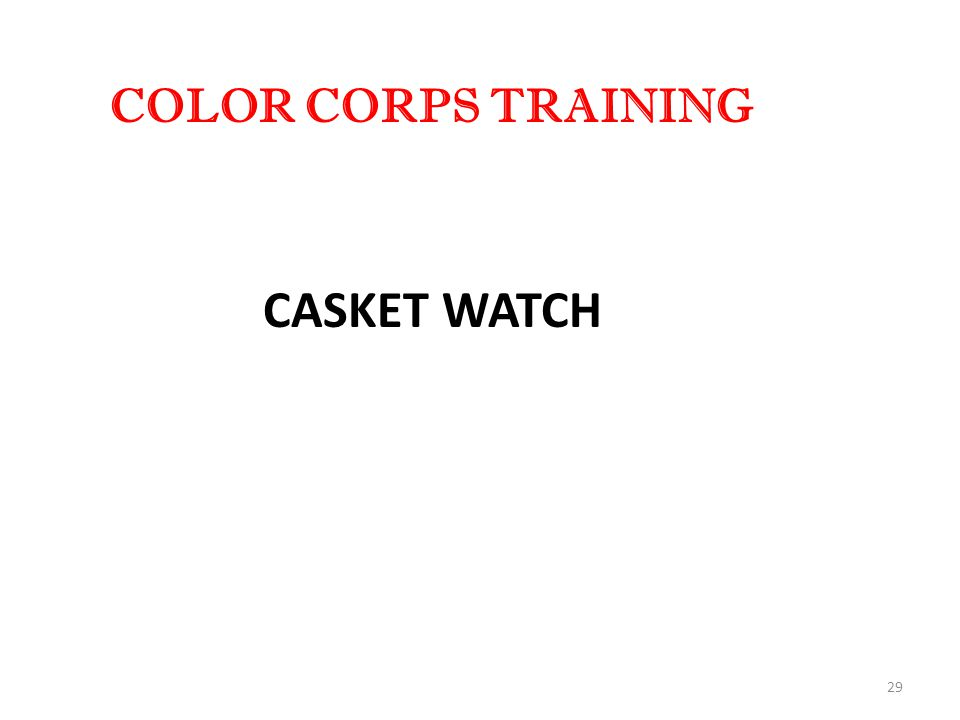 29 COLOR CORPS TRAINING CASKET WATCH