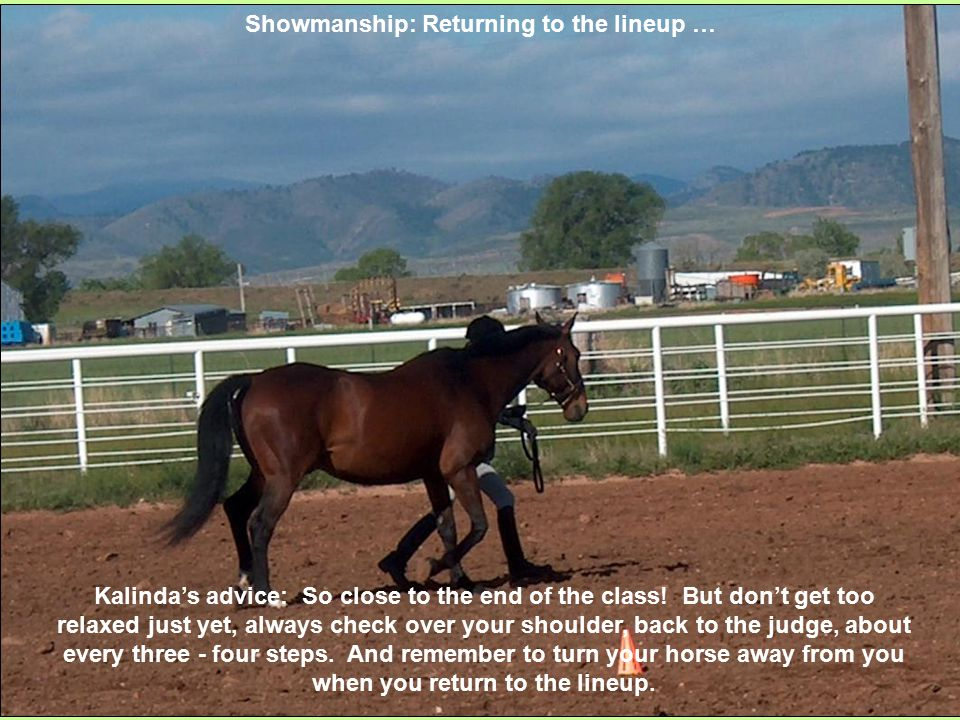 Showmanship: Returning to the lineup … Kalinda's advice: So close to the end of the class.