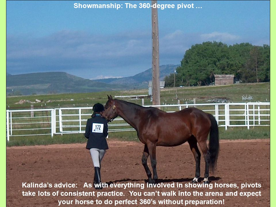 Showmanship: The 360-degree pivot … Kalinda's advice: As with everything involved in showing horses, pivots take lots of consistent practice.