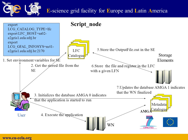 www.eu-eela.org E-science grid facility for Europe and Latin America LFC Catalogue Metadata Catalogue Storage Elements AMGA User 1.