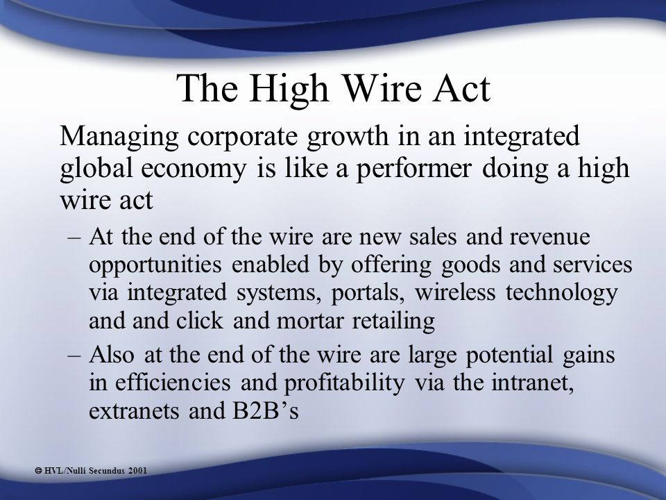  HVL/Nulli Secundus 2001 The High Wire Act Managing corporate growth in an integrated global economy is like a performer doing a high wire act –At the end of the wire are new sales and revenue opportunities enabled by offering goods and services via integrated systems, portals, wireless technology and and click and mortar retailing –Also at the end of the wire are large potential gains in efficiencies and profitability via the intranet, extranets and B2B's
