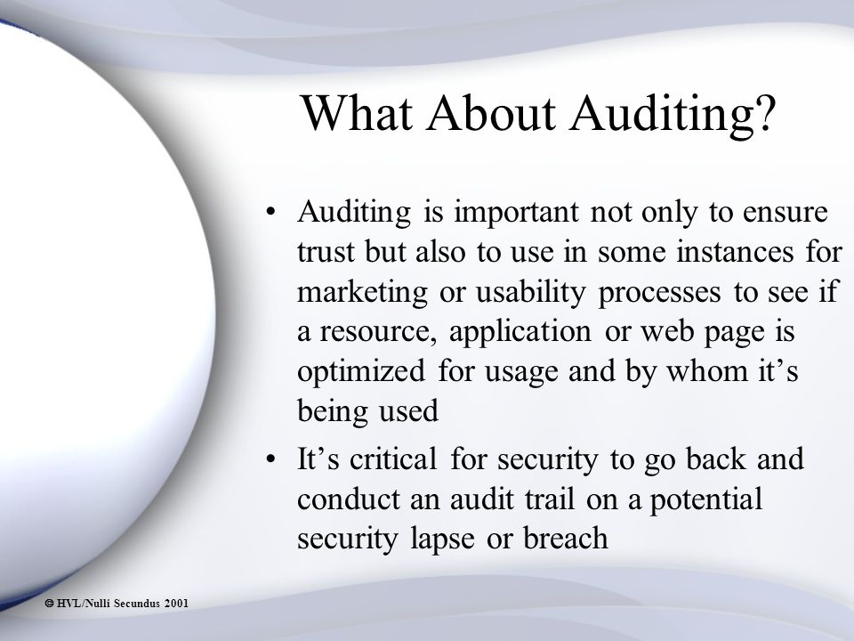  HVL/Nulli Secundus 2001 What About Auditing.