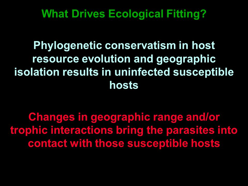 What Drives Ecological Fitting.