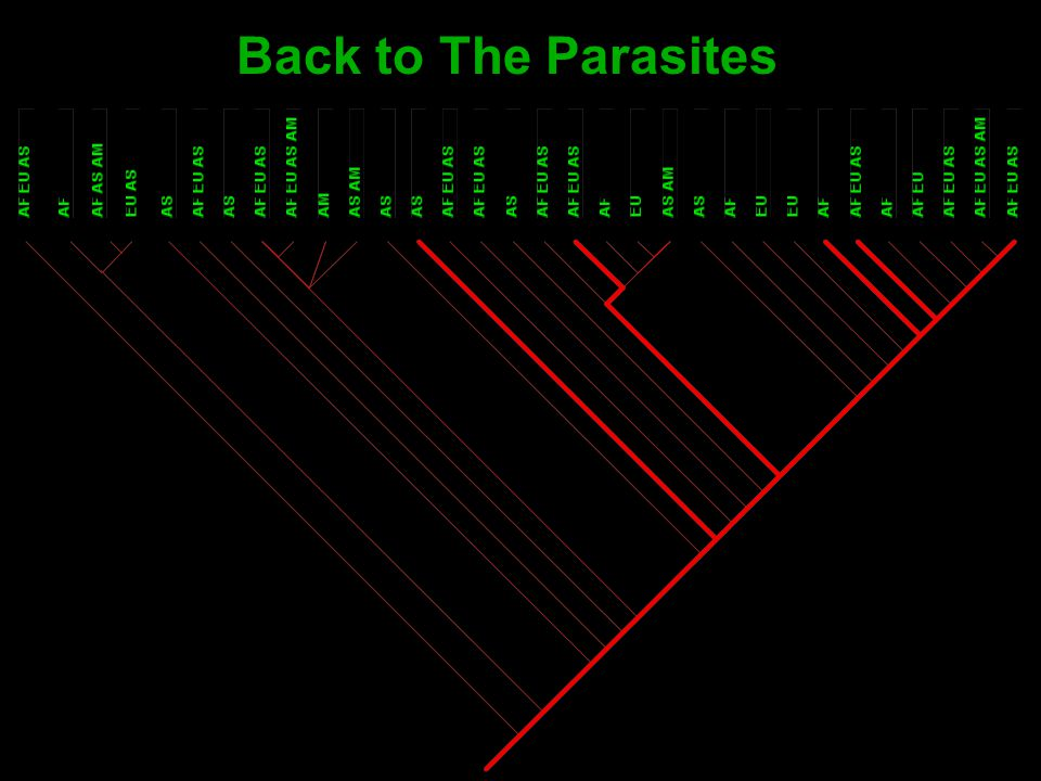 Back to The Parasites