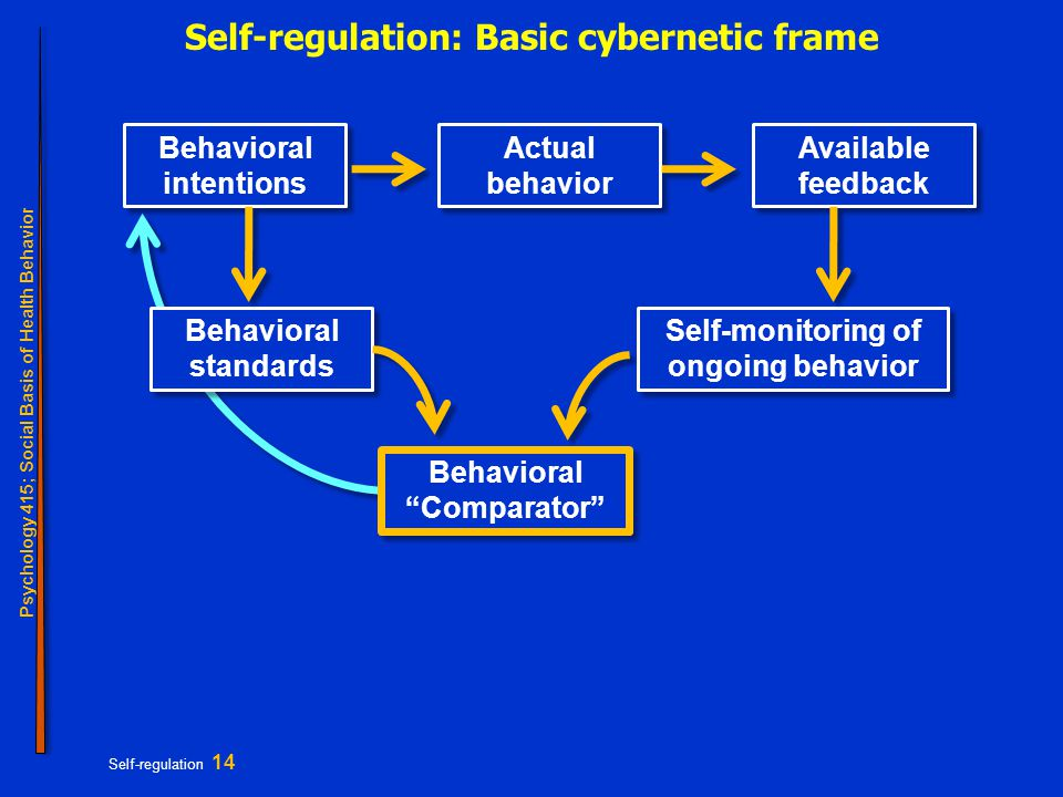 Psychology 415; Social Basis of Health Behavior Self-regulation 14 Self-regulation: Basic cybernetic frame Behavioral intentions Behavioral standards Self-monitoring of ongoing behavior Actual behavior Available feedback Behavioral Comparator