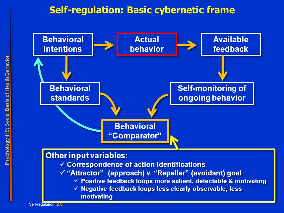 Psychology 415; Social Basis of Health Behavior Self-regulation 20 Self-regulation: Basic cybernetic frame Behavioral intentions Behavioral standards Self-monitoring of ongoing behavior Actual behavior Available feedback Behavioral Comparator Other input variables: Correspondence of action identifications Attractor (approach) v.