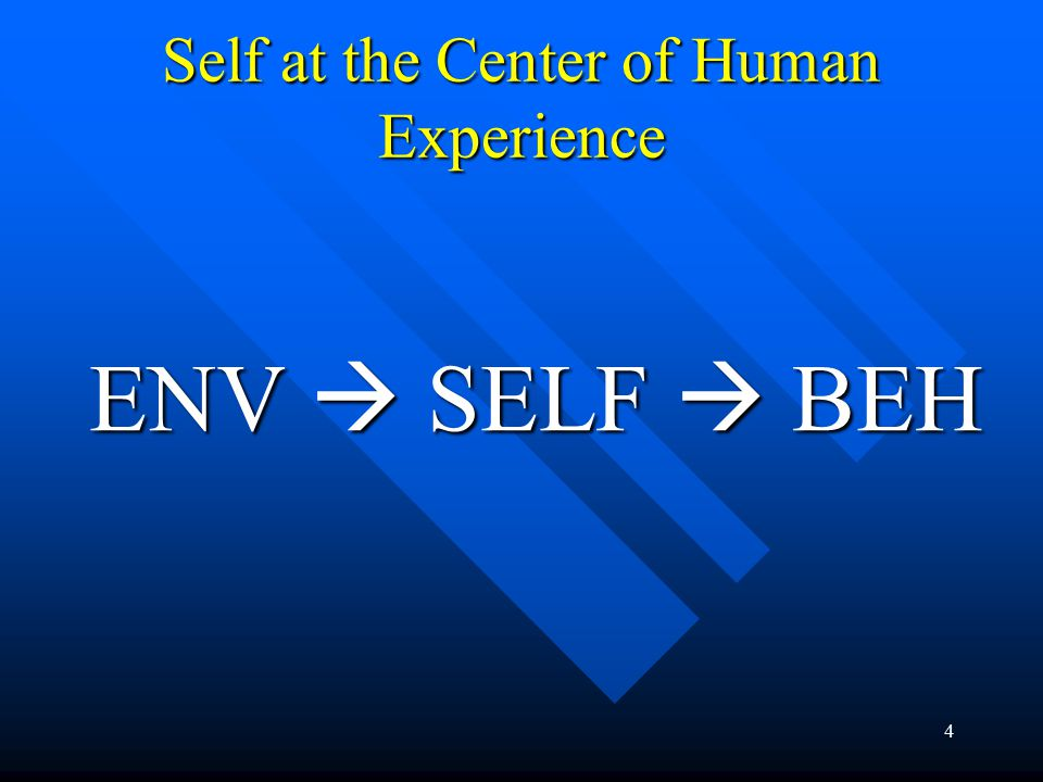 4 Self at the Center of Human Experience ENV  SELF  BEH