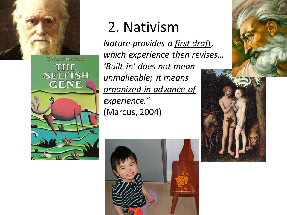 2. Nativism Nature provides a first draft, which experience then revises… 'Built-in' does not mean unmalleable; it means organized in advance of exper