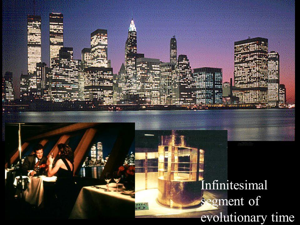 Infinitesimal segment of evolutionary time