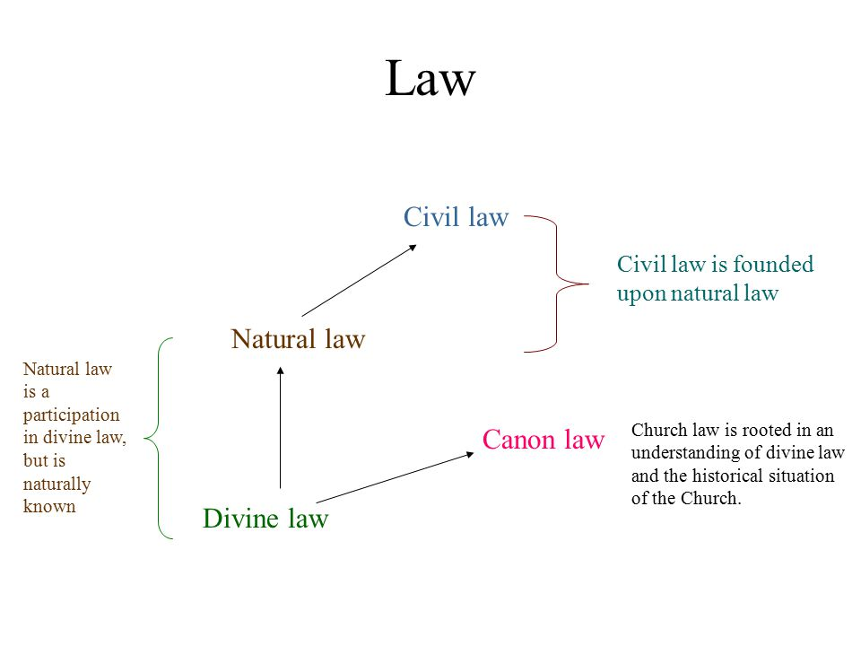 Law Divine law Natural law Civil law Canon law Civil law is founded upon natural law Natural law is a participation in divine law, but is naturally kn