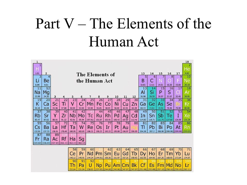 Part V – The Elements of the Human Act
