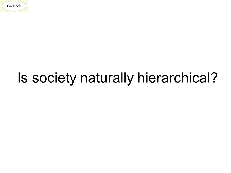 Is society naturally hierarchical?