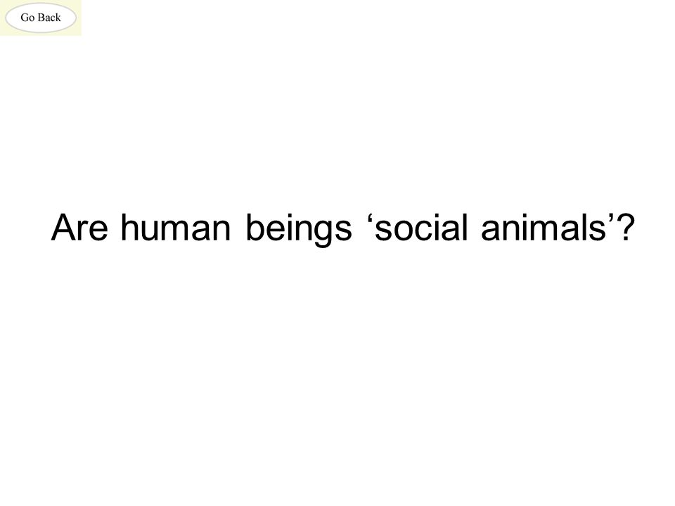 Are human beings 'social animals'