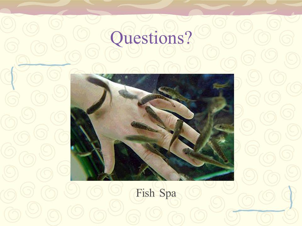 Questions Fish Spa