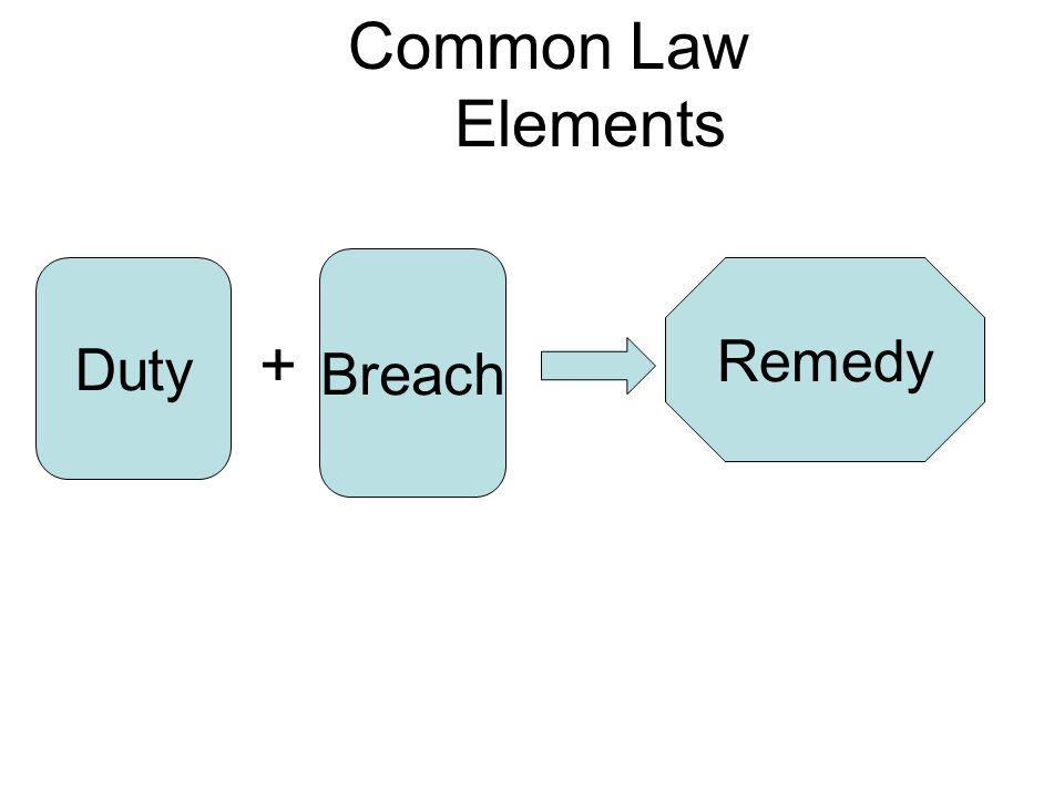 Duty + Breach Remedy Common Law Elements