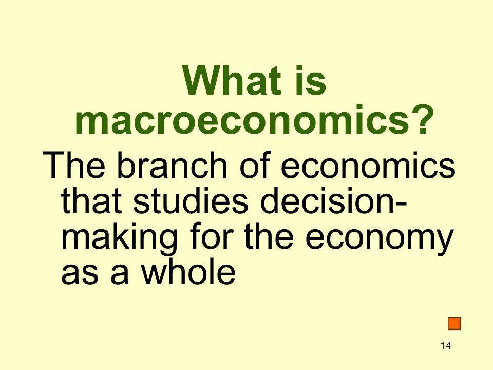 14 What is macroeconomics.