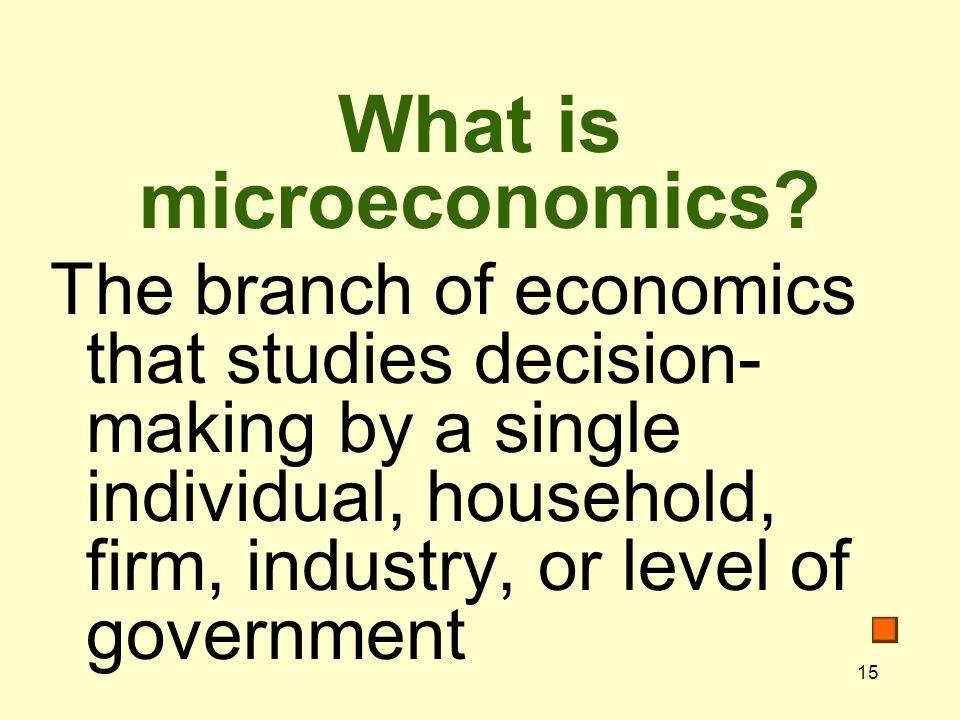 15 What is microeconomics.