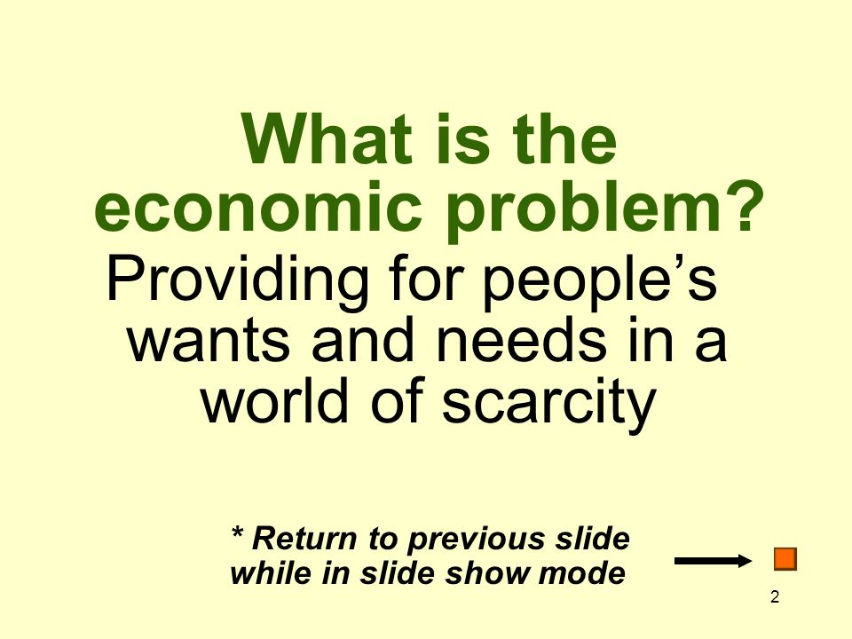 2 What is the economic problem.